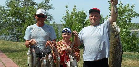 Рыбалка на Дону - что и почем? #fish #рыбалка #дон