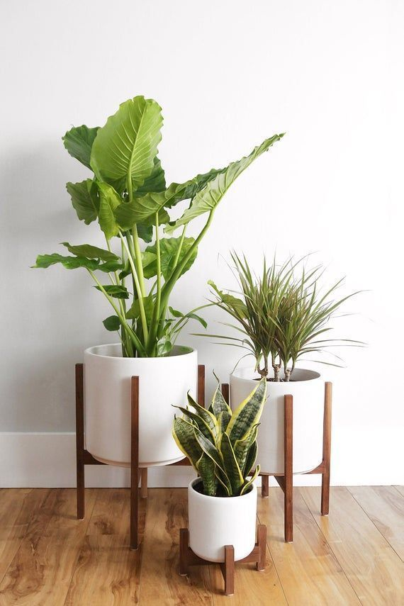 Medium Mid Century Modern Planter Planter Stand Plant Pot With Wood Stand 10 Ceramic In 2020 Mid Century Modern Planter Mid Century Modern Plant Stand Plant Decor