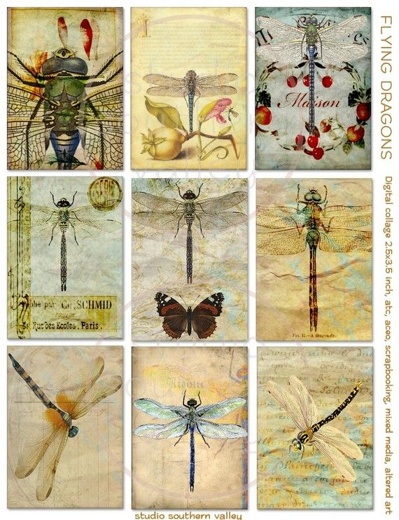 Dragones voladores - 9 libélulas digitales de impresión del collage para scrapbooking, diario, técnicas mixtas, arte alterado, la toma de álbum, tarjetas, etiquetas
