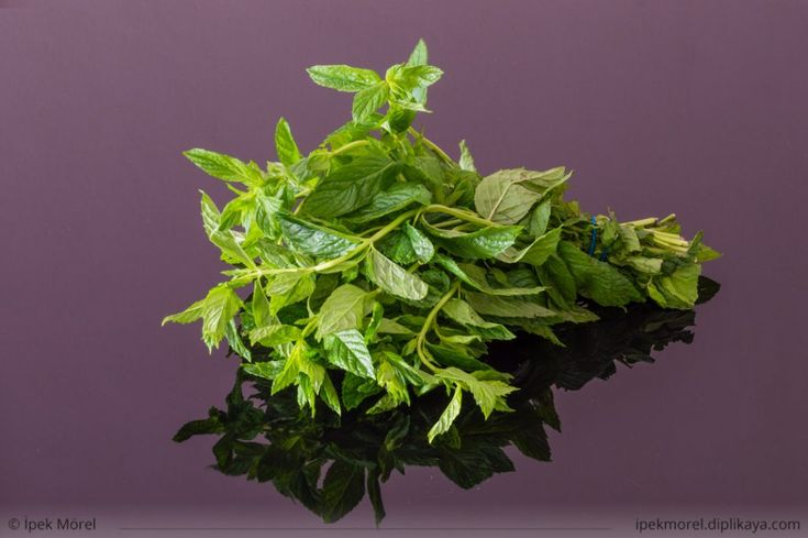 Bunch of fresh mint on a black reflective table