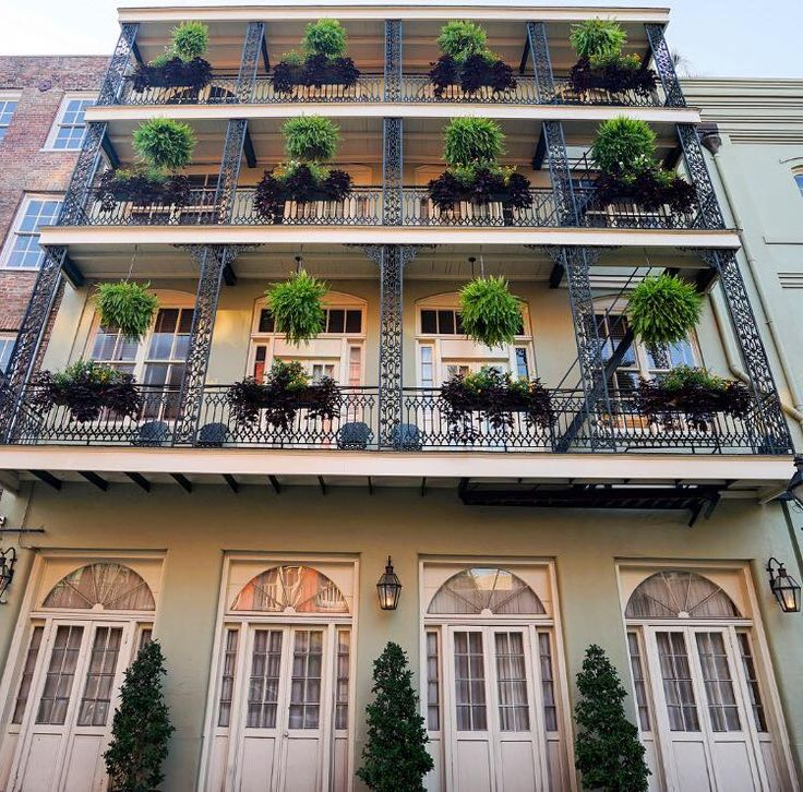 Colorful comfort and convenience located in the heart of the French Quarter.