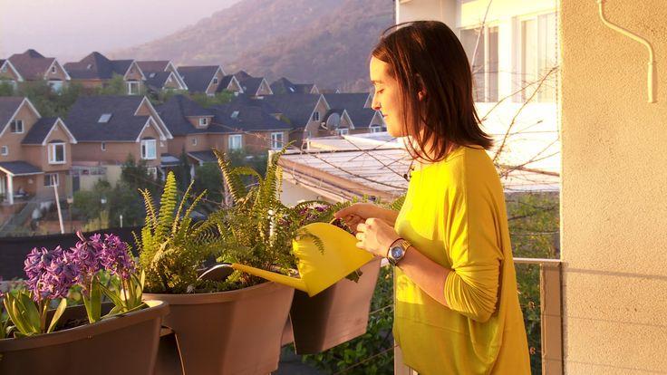 Las terrazas en las casas o los balcones en los departamentos son una muy buena alternativa para decorar, sobre todo cuando no tenemos jardín, el suelo es de un material duro, o incluso cuando el clima no es muy favorable.