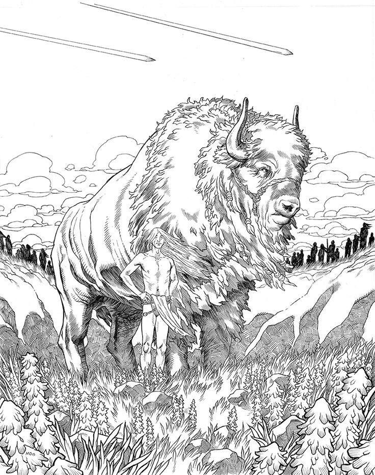 19 best buffalo for deb images on pinterest  bison