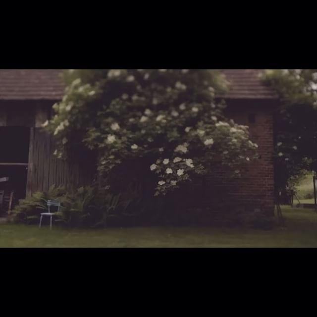 Przed deszczem Before the rain . . #film #shortfilm #beautiful #natural #eco #nazajutrz #nature #naturelover #wild #green #natura #nazajutrzfilm #vintage #rustic #rustykalny #spring #wiosna #artistic #birds #ptaki #ogród #ogrod #gardening #garden #artfilm #ilovefilm #filmslubny #weddingfilm #filmowiec #filmowcy