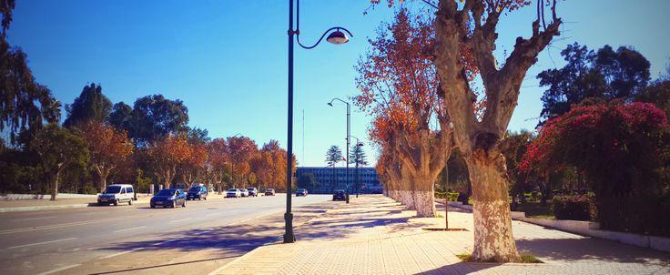 Autumn in Kenitra, Morocco
