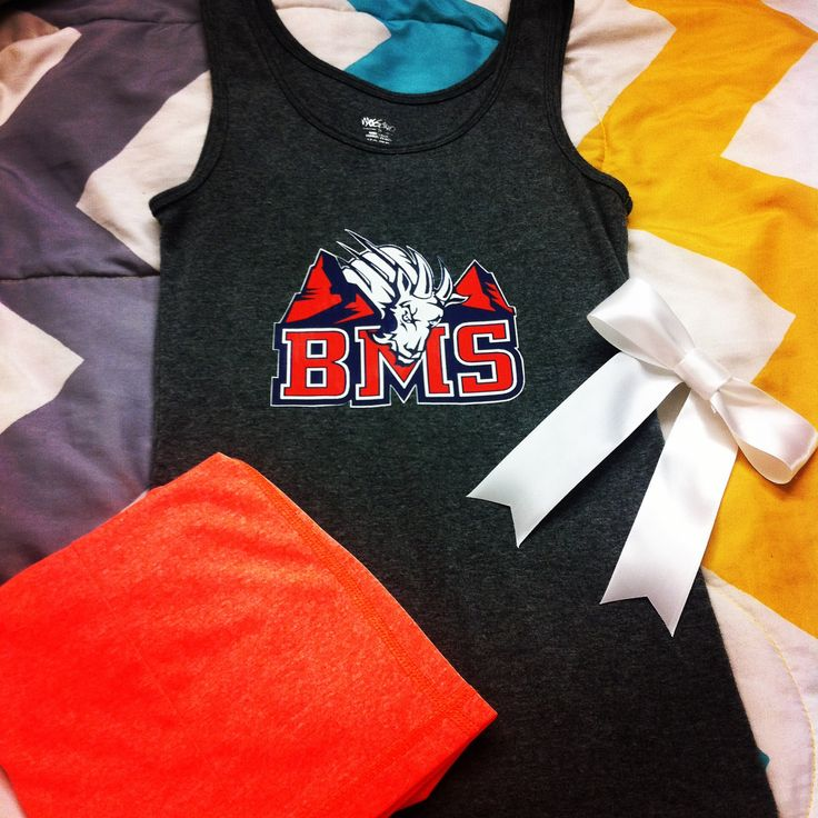 Blue Mountain State cheer costume I made for Halloween this year!