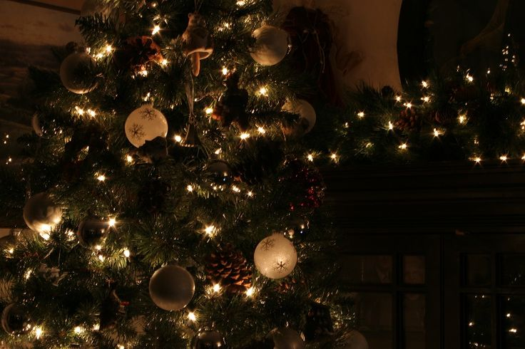 Christmas tree twinkle 2015