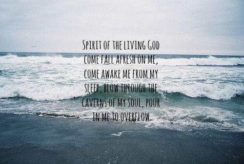 Love me the way i am lyrics