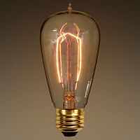 40 Watt - Edison Bulb - 4.8 in. Length - Vintage Light Bulb - Hand-Wound Tungsten Filament - Clear with Amber Tint