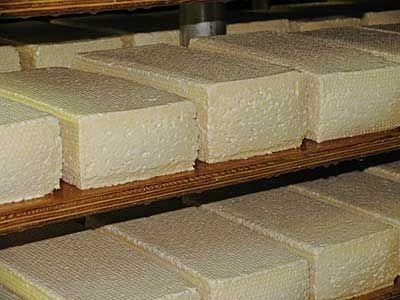 Making Wisconsin Brick Cheese