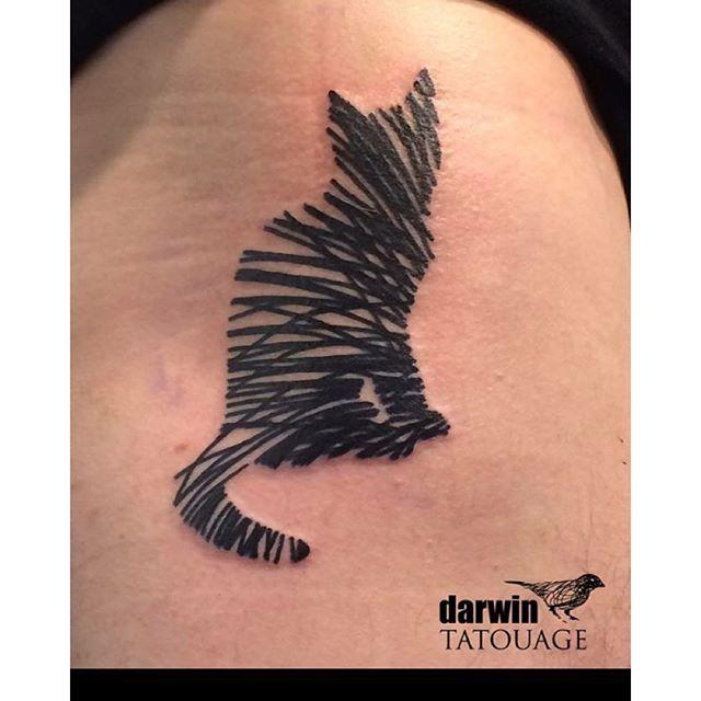 Cat tattoo by Darwin Toucourt