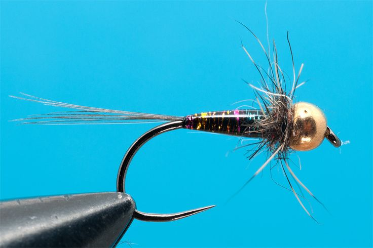 Glitter Nymph- by Lucian Vasies | | Hatches Fly Tying Magazine