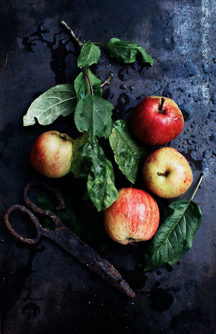 BEAUTIFUL APPLES....love the scissors and greenery and water. Åkero apples, the best!