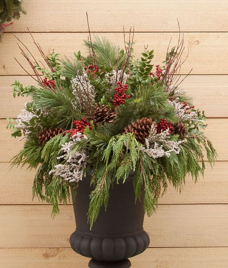 Our collection is perfect for outdoor containers or window boxes -- fresh Incense Cedar, Noble Fir, White Pine, Boxwood, Red Dogwood, large Pine cones, white Statice, and faux red berries make creating your own designs easy. A 7-pound box fills a 3- to 4-foot window box. Shipment begins in mid-November. We want your wreaths and greens to arrive looking their best. It may take up to 5-9 business days for your order to arrive fresh from the farm.Sorry, No Express delivery.