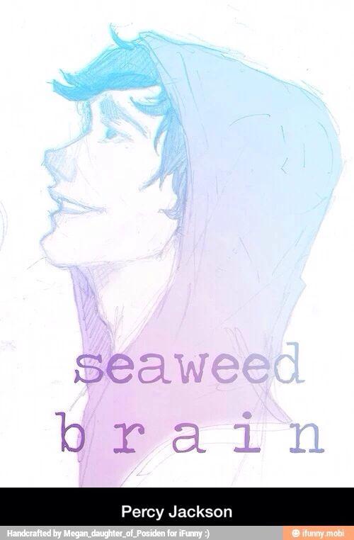 Seaweed brain
