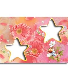 Plantilla de colores pastel con el amor como tema. Vemos dos marcos en forma de estrella de 5 puntas y un fondo de flores color rosa. Un pequeño hada intenta atrapar una mariquita encaramado a una flor blanca. http://www.fotoefectos.com