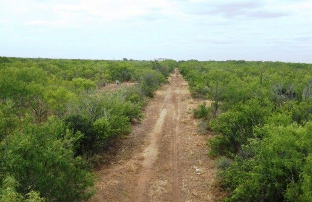 You re sure to love your hunting land in south Texas, and you re sure to have made a financial sound investment, too  It s one of the best places to locate.