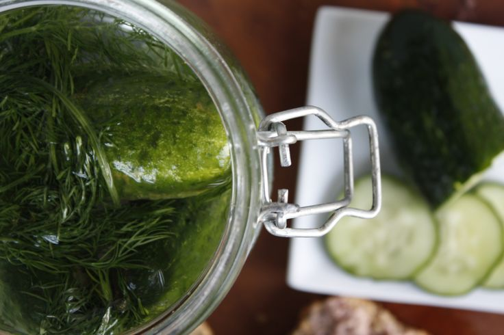 Fast salted cucumber, perfect for your sandwich