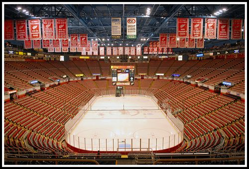 Joe Louis Arena  this is the place for hockey.