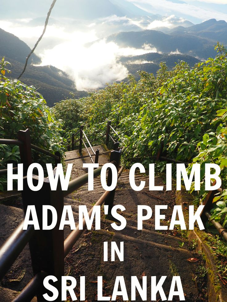 Adam's Peak (Sri Pada) is a must do when visiting Sri Lanka! Here's everything…