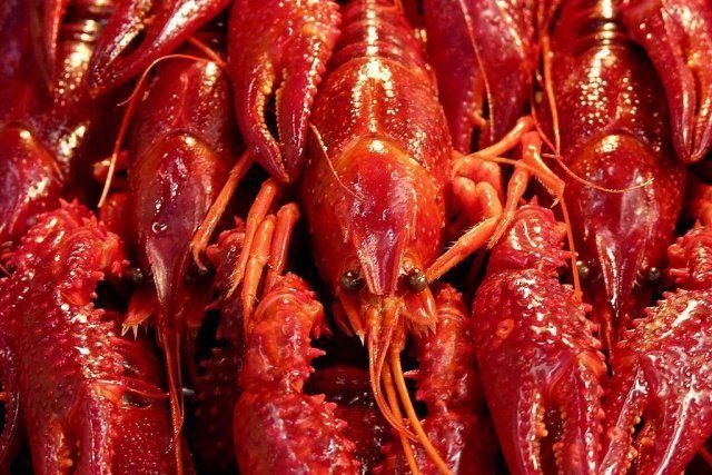 Foto de la receta de cangrejos de río