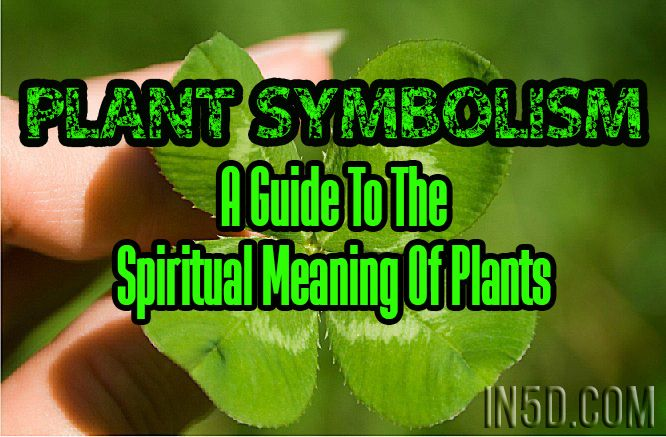 A through G  H through P  Q through Z Similar to animals, plants and trees have symbolic meanings. If a certain plant or tree comes into your life on any given day, then take the time to see the sy…
