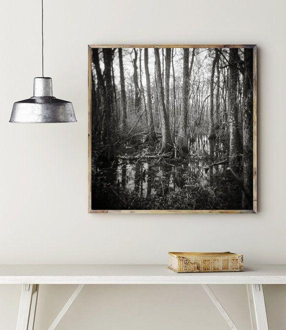 Gothic Photography Holga Print Cypress Swamp by lostkatphotography
