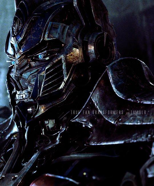 True Fan Transformers : Foto