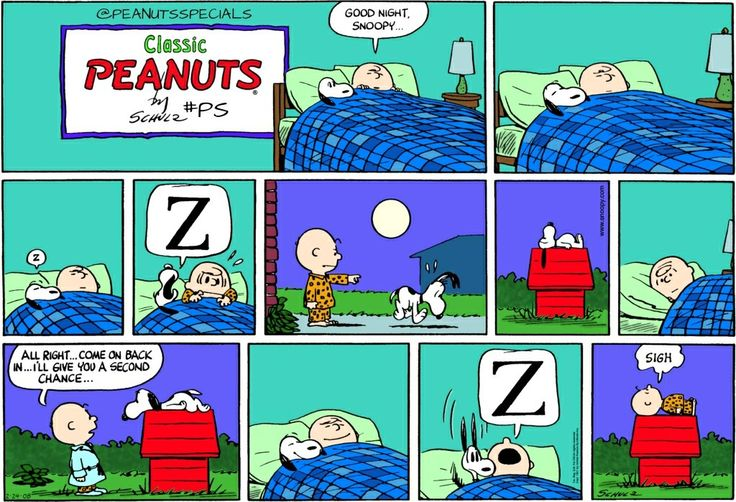 www.peanuts.com Latest appearance: February 24th, 2008 / First appearance: February 26th, 1961 #peanutsspecials #ps #pnts #peanuts #schulz #snoopy #charliebrown #goodnight #secondchance #sigh