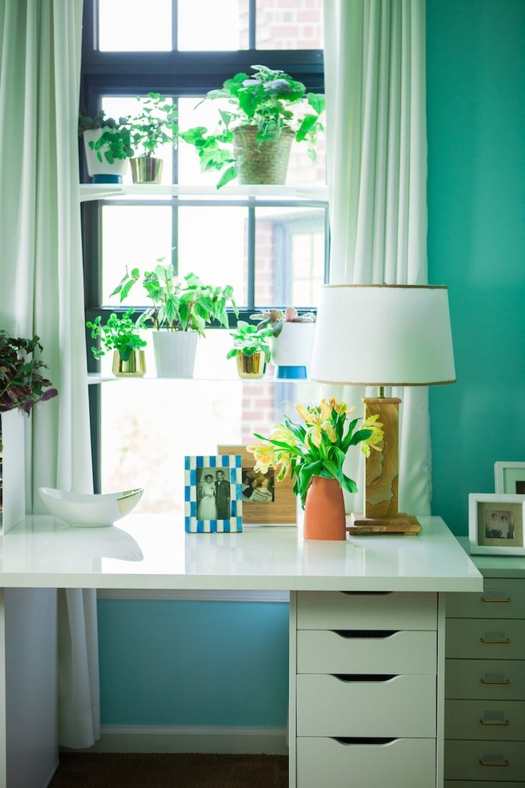 Plants For Kitchen To Decorate It: 17+ Best Images About Plant Shelves On Pinterest