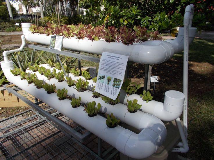 how to build vertical planter lettuce - Buscar con Google