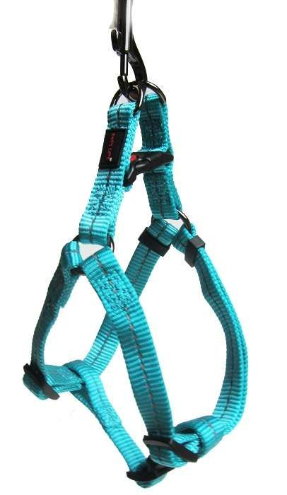 Birkenstock Dog's Life Reflective Supersoft Webbing Harness Turquoise - Medium | Buy Online in South Africa | TAKEALOT.com