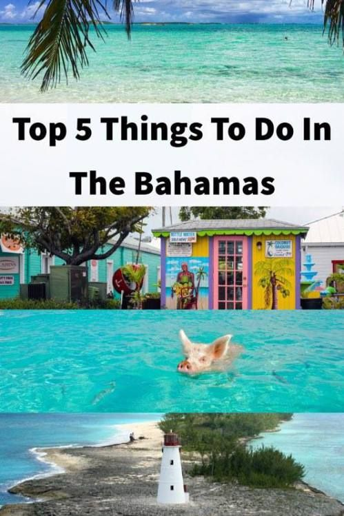 Top 5 Best Things To Do In The Bahamas | Tips For Visiting The Bahamas | What To Do In The Bahamas | Complete Bahamas Guide | Bahamas Travel Tips | Top Things To See And Do In The Bahamas Islands