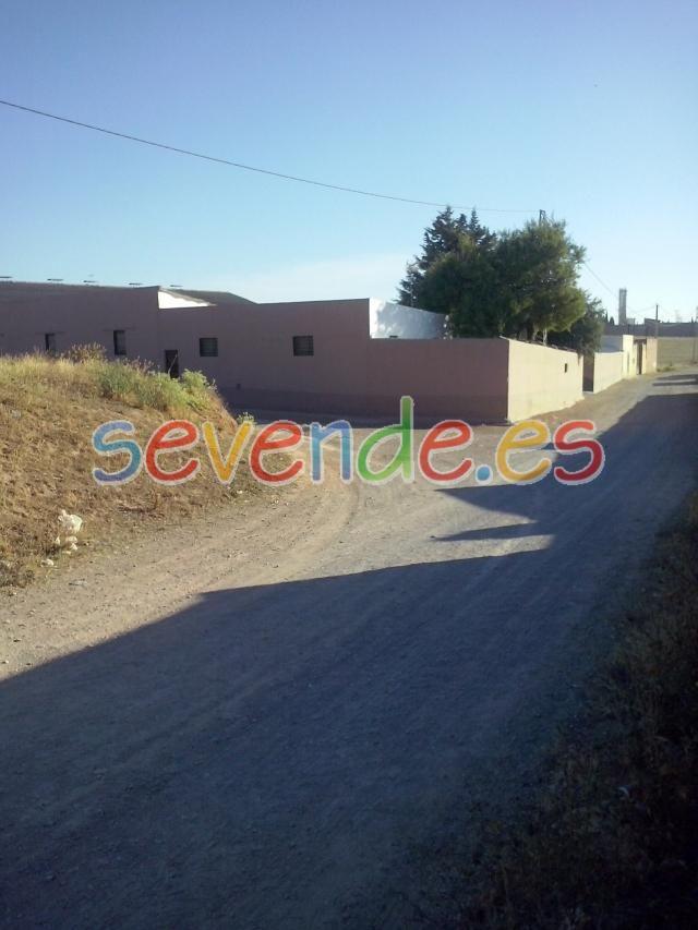 VENTA DE : FINCA RUSTICA CON CHALETS - 1300 M2 - A 100 METROS DEL PUEBLO DE CAMPILLOS - MALAGA - ANDALUCIA - ESPAÑA - TELEFONO : 610636691