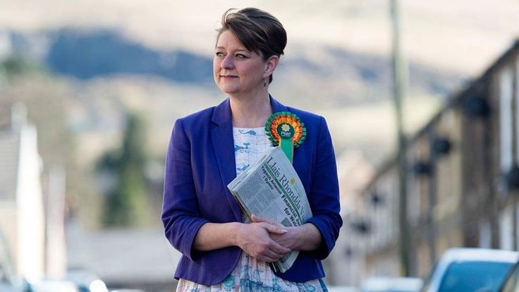 Who is Leanne Wood? A profile of the Plaid Cymru leader - BBC News