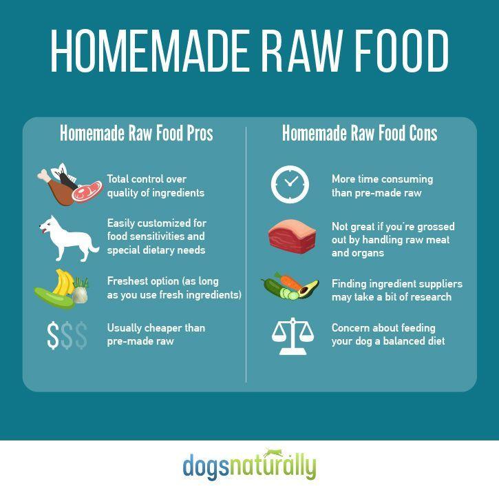 Mejores 199 imgenes de raw dog food en pinterest bulldogs raw dog food homemade vs store bought forumfinder Images