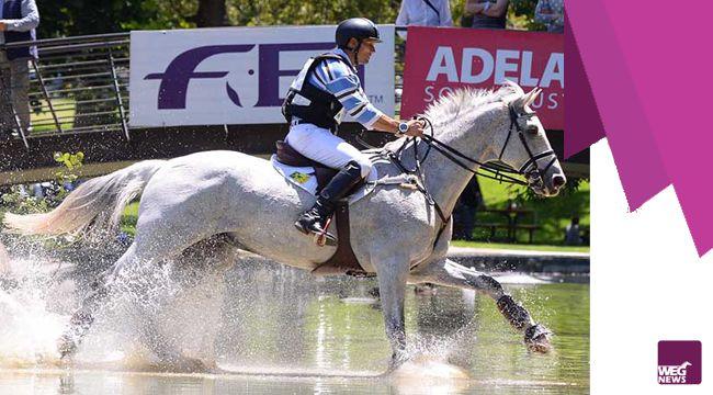 Adelaide---FEI-Classics-Sha