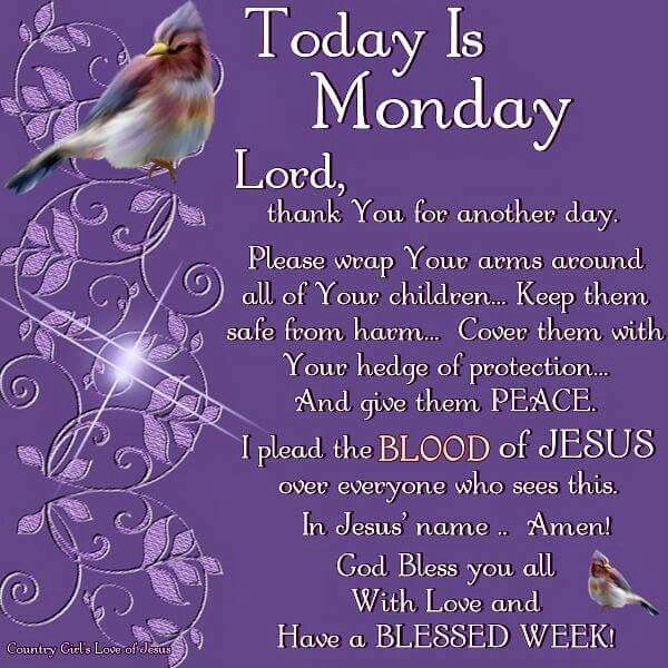 Monday Blessings!                                                                                                                                                                                 More