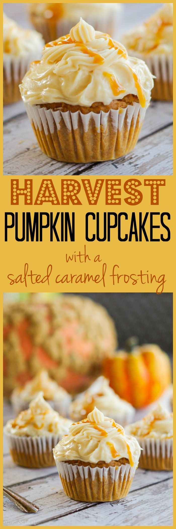 Harvest Pumpkin Cupcakes with a Salted Caramel Frosting | www.homeandplate.com | Sweet pumpkin. Salted caramel. Put the two together and you have heaven in a cup cake.