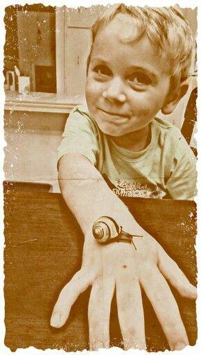 Oscar l escargot