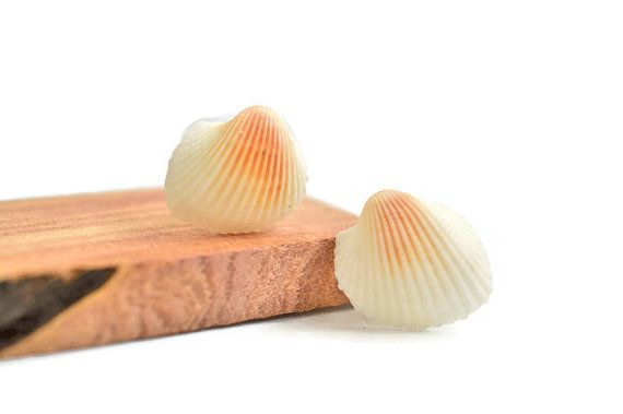 Mermaid Jewelry,  beach earrings,  Real sea shell earrings #mermaids