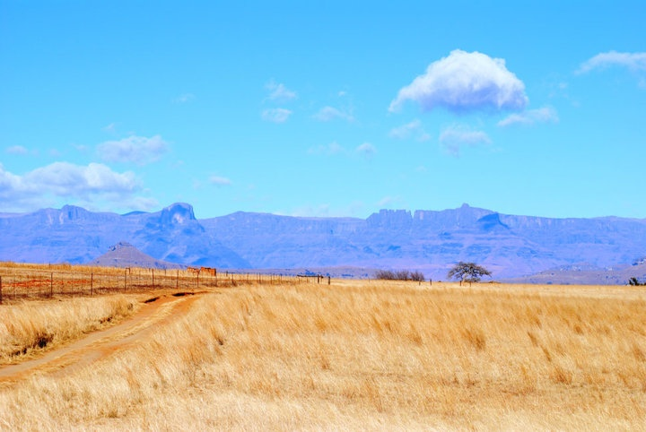 Landscape in the heart of the Orange Free State