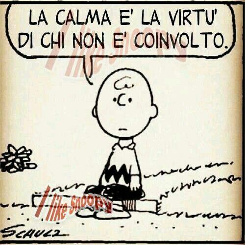 La calma...