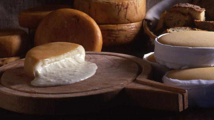 O queijo da Serra, o mais antigo e reconhecido queijo português, é feito…