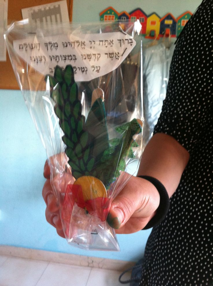Little lulav with blessing