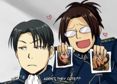 Neee ? *--* Shingeki no Kyojin and Fullmetal Alchemist crossover !