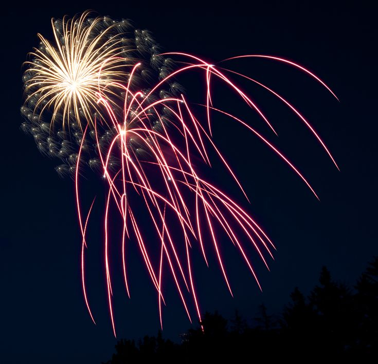 3rd annual DTP Summer BBQ! This time with Fireworks! — Daytripper Photo