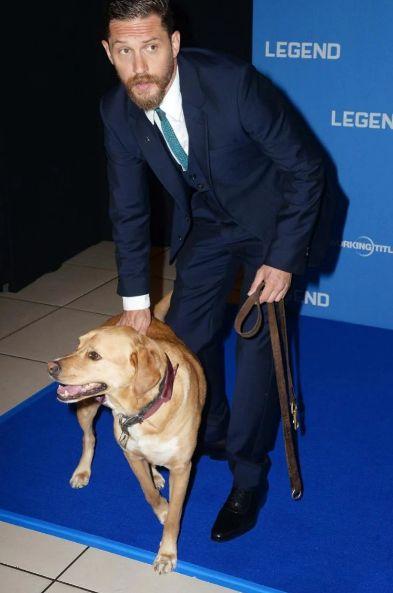 Актёр Том Харди, известный своей любовью к собакам, в личном блоге на Tumblr объявил о том, что его собака Вудсток умерла на шестом году своей жизни от полимиозита. Харди написал об этом в большом трогательном письме, которое он адресовал своему четвероногому другу. Эта история растрогала людей по всему миру, и они постят актёру слова поддержки.  Письмо актёра Тома Харди о смерти своей любимой собаки растрогало интернет-пользователей по всему миру. 7 июня актёр сообщил в своём блоге в Tumblr…