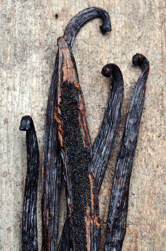 [BLACK FRIDAY] Le Noir à Rungis : les Gousses de Vanille - Black food