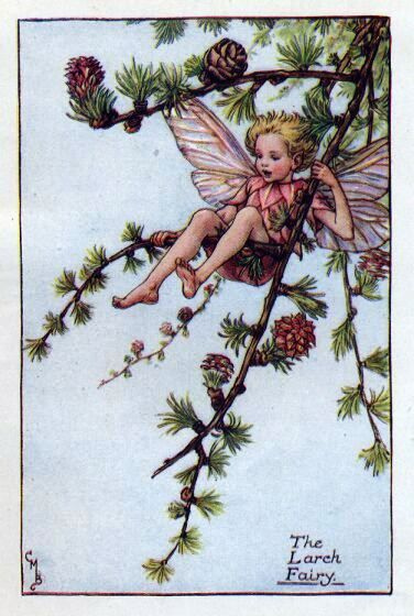Cicely Mary Barker: